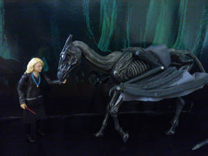 Greeting A Thestral