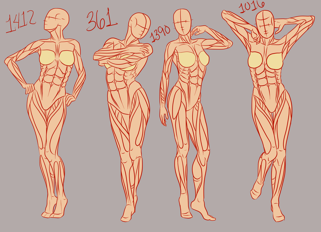 References They Do A Body Good Female Part 1 By Spork On Deviantart