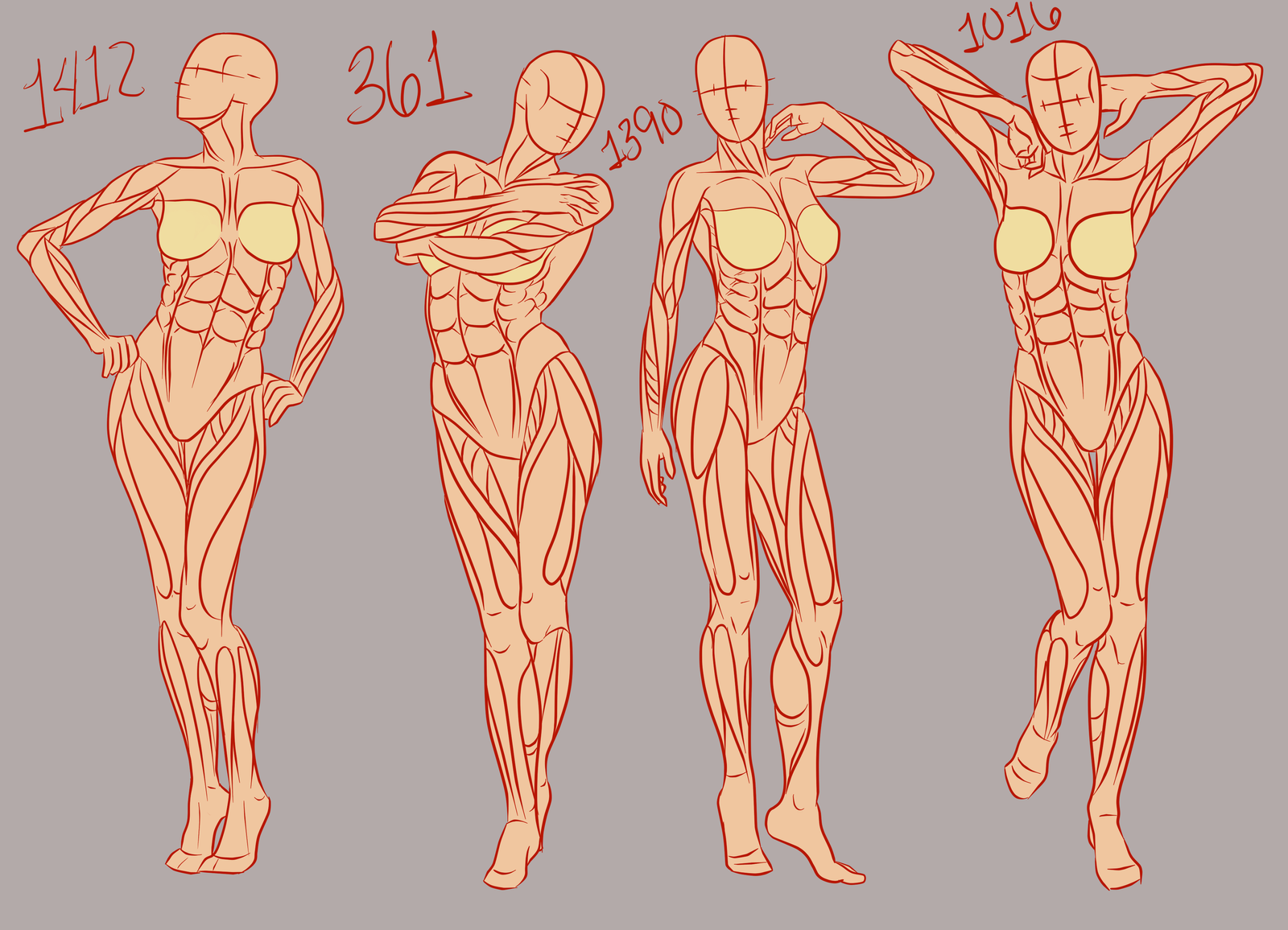 References, they do a body good: Female part 1 by Spork- on DeviantArt