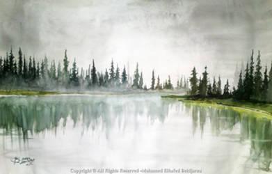 foggy land
