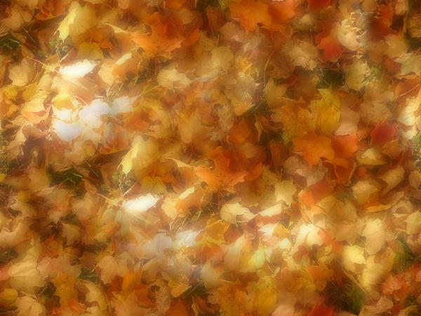 Seemless Leaves by gabrielslair