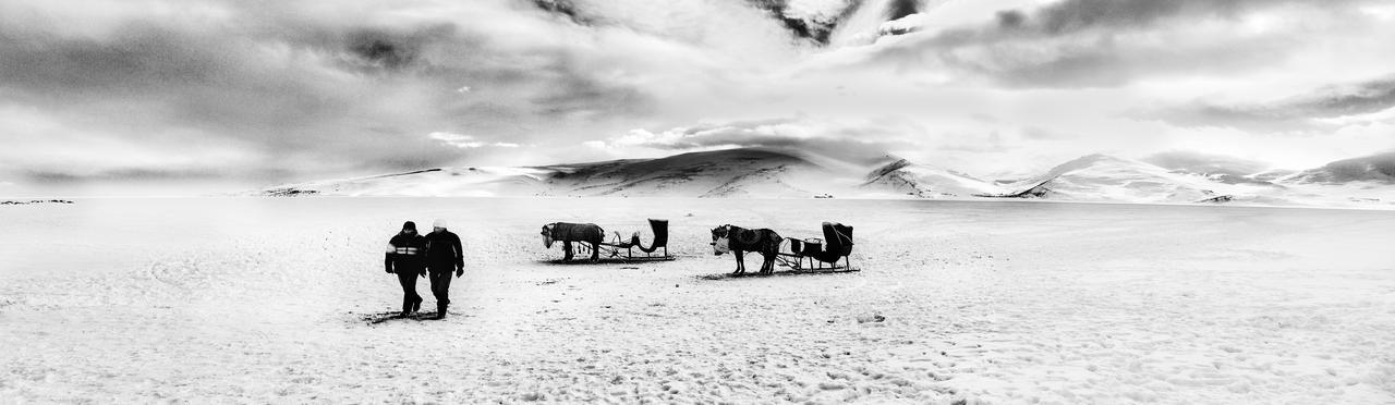 sleighs by alibektas