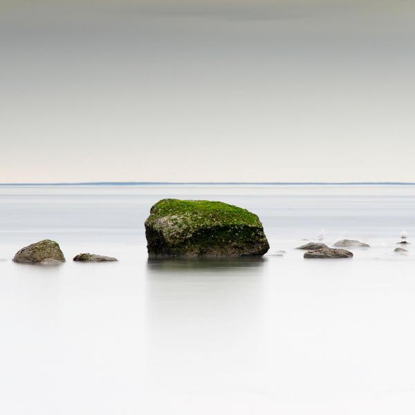 Green by DennisChunga
