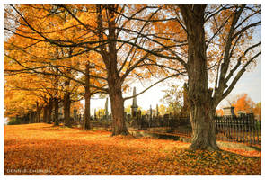 Autumn Cemetery by DennisChunga