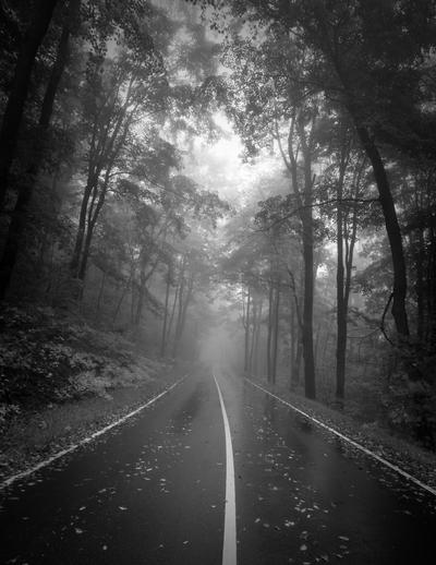 Behind The Wheel by DennisChunga