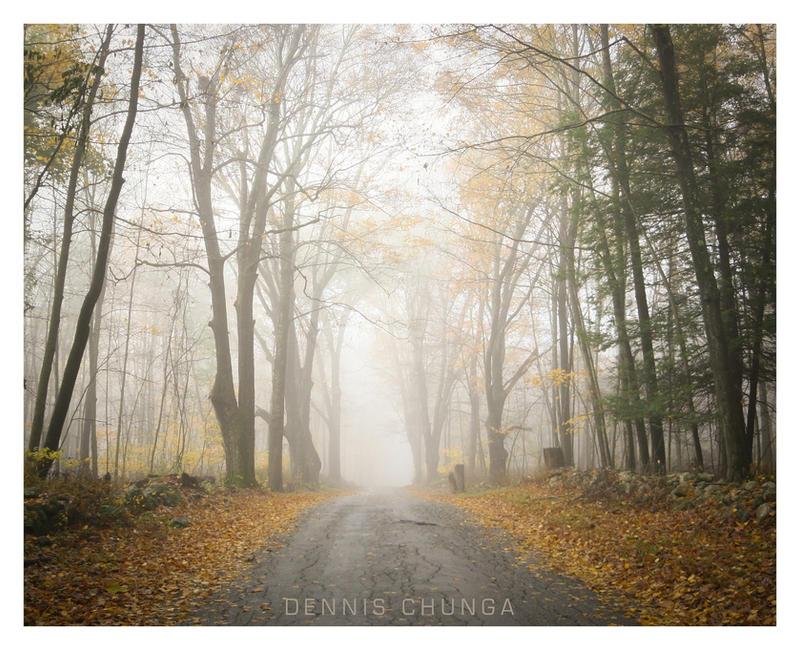 Morning Fog by DennisChunga