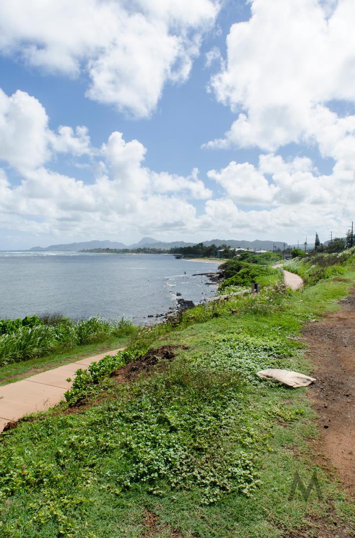 Hawaii series, I by seredream