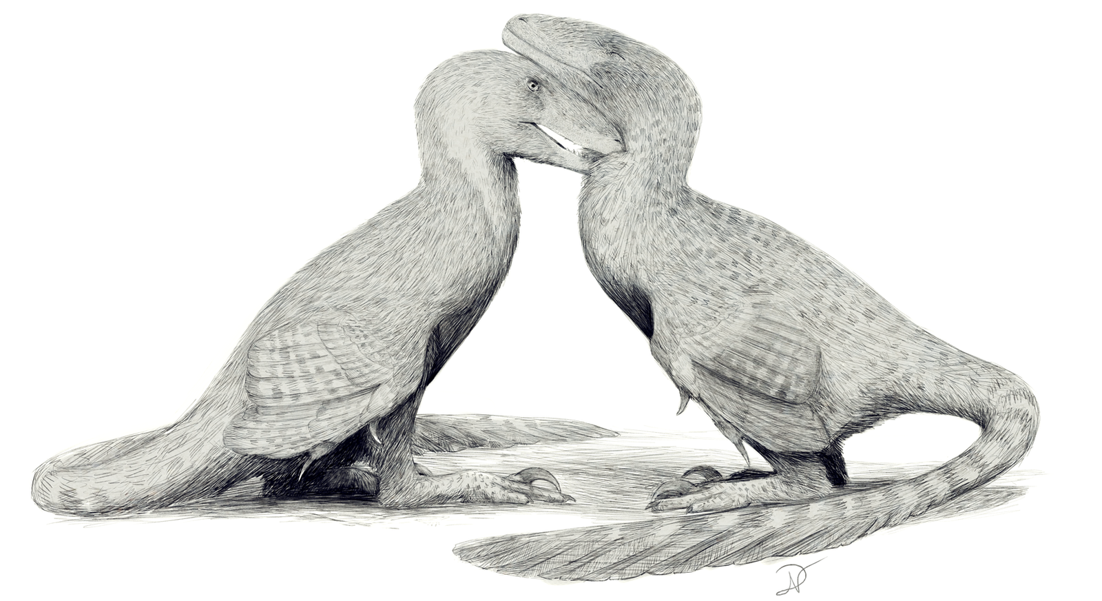 Love doves by DuskyVel