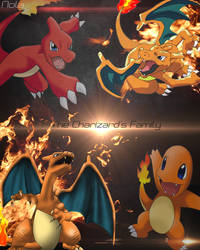 Pokemon Charizard's Family || TheGraphicsArts Nola by TheGraphicsArts