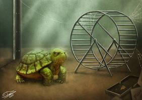 Grumpy Turtle by Disse86