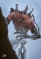 Cyborg Remake