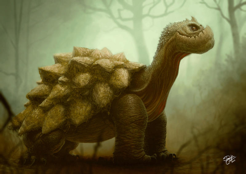 Turtle by Disse86