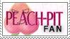 Peach-Pit Fan by CarmelCoveredQ-Chan