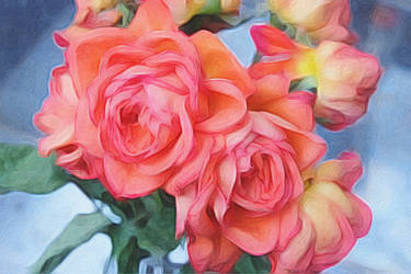 Stressed Pink Roses by digivuza