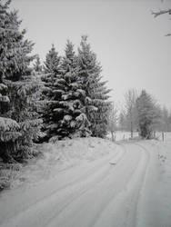 snow stock3