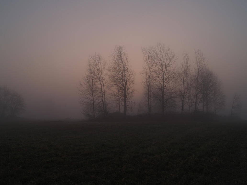 trees in mist 2 by akinna-stock