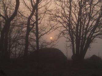 mist and moon