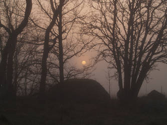 mist and moon by akinna-stock