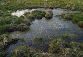 watercourse02 by akinna-stock