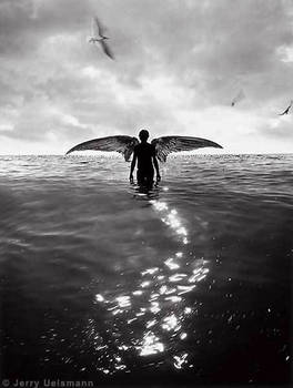 die in the water
