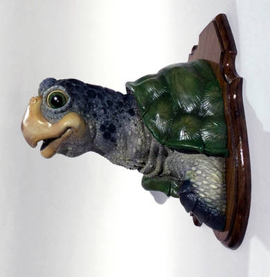 Turtle Eclipse of the Heart