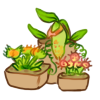 Mini Garden - Carnivore by LiticaHarmony