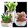Mini Garden - Haworthia and Friends by LiticaHarmony