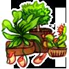 Mini Garden - Alata, Venus and Myrtle by LiticaHarmony
