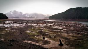 Desolate by RCAmbriz