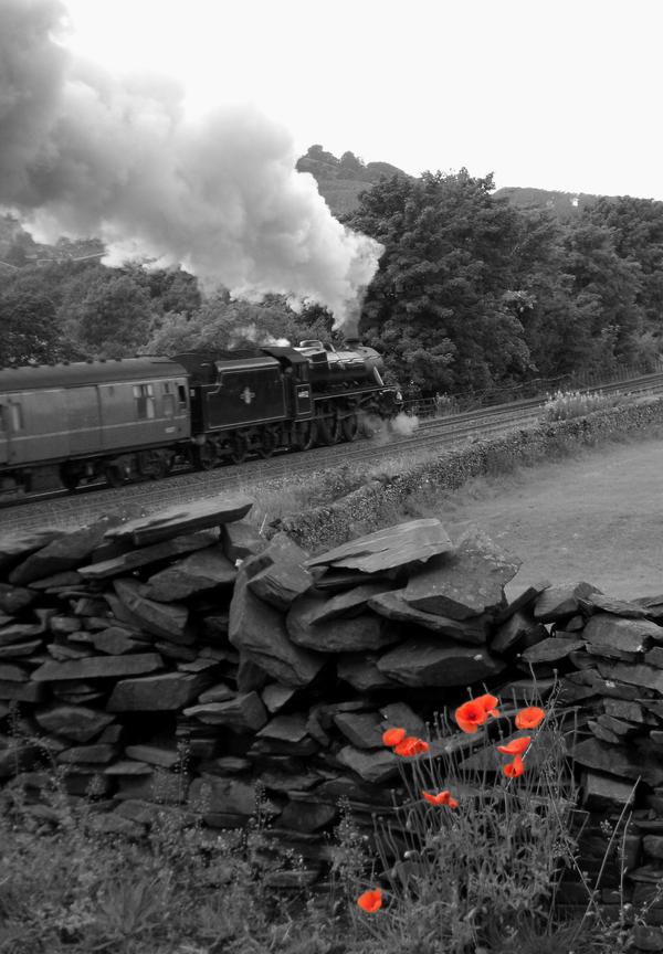 Lest We Forget by matt-durkan-railways
