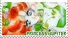 Sailor Moon - Princess Jupiter Stamp by MireiKaibatsuki