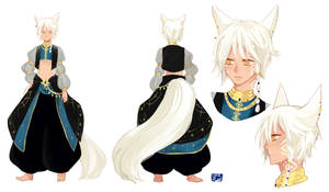 Com Character Sheet by SoleilRune