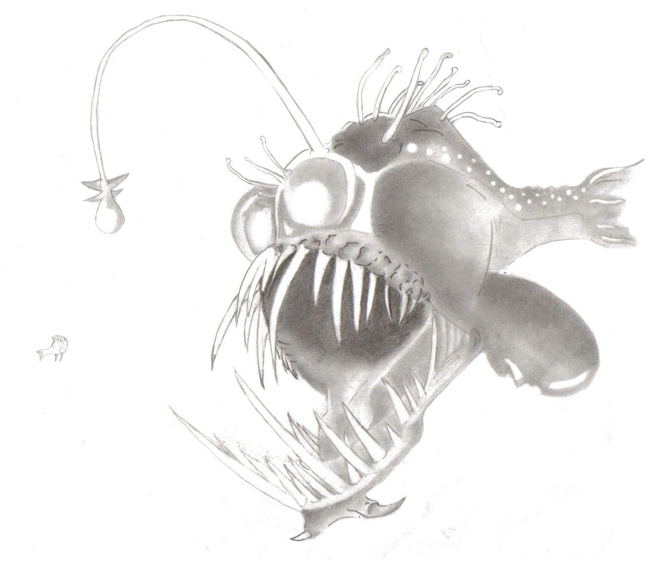 The Angler Fish By Sheeku On DeviantArt