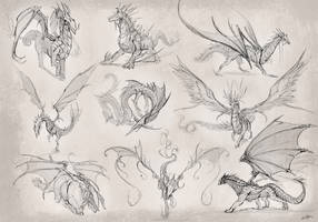 Draongs roughs2014 by Kailyze