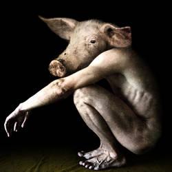 pig man 004