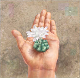 Cactus on hand by Kafelek