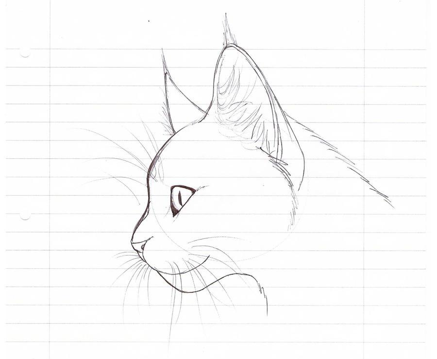 3д картинки карандашом на бумаге для начинающих 13