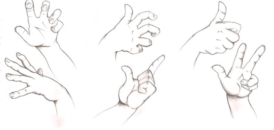 Hand Anatomy by Bianca-ink-cartoon on DeviantArt
