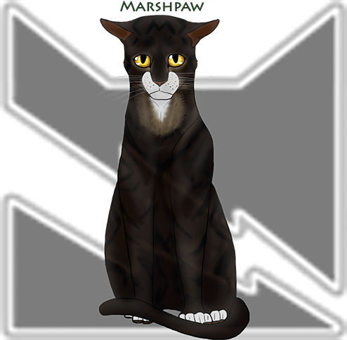 Cays Characters Marshpaw_by_caysart-dc811ye