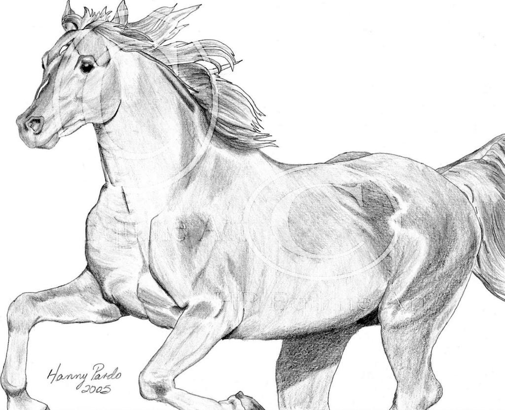 Horse Running by hpequineart on DeviantArt