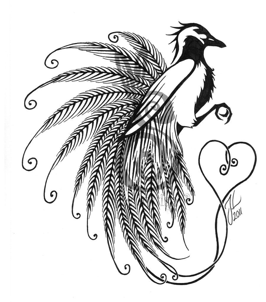 Bird of paradise by Ri...