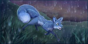 A Fox in the Night