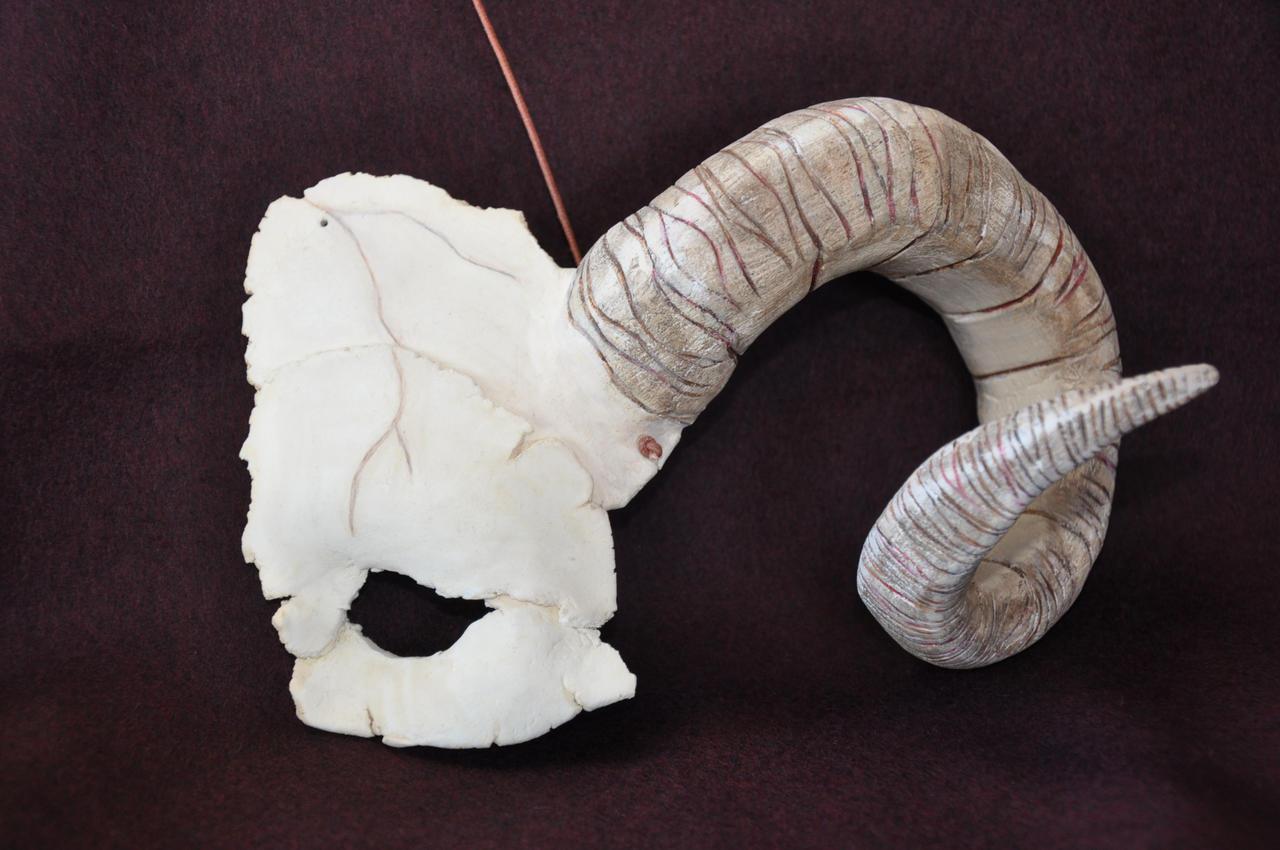 Half Ram Skull Mask by...