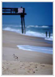 beach tread