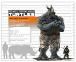 Rocksteady Height Chart