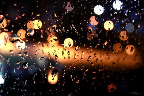 precious rain drops by MetalNi