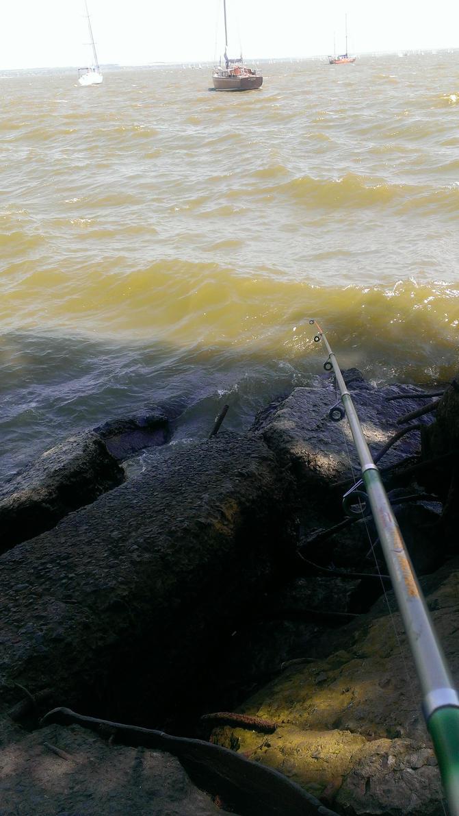Fishing at Port of Azov sea by kiselev1382