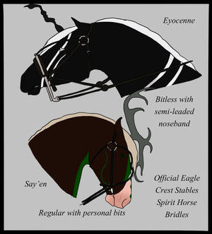 Official Spirit Horse Bridles