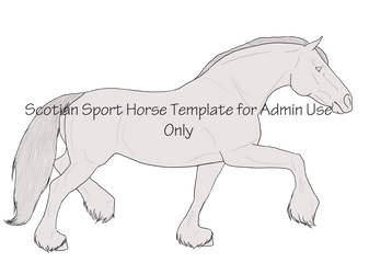 Scotian Sport Horse Template by AthenaMyth