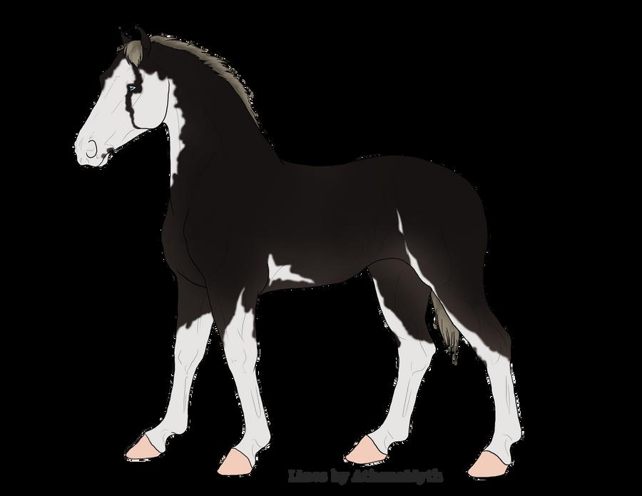 Foal for Haathwyn by AthenaMyth